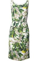 Dolce & Gabbana Sleeveless Floral Dress - Lyst