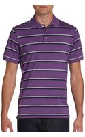 Saks Fifth Avenue Black Label Triple Striped Ice Cotton Polo - Lyst