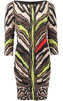 Just Cavalli Fitted Tiger Print Dress - Lyst