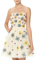 RED Valentino Daisy Decorated Tulle Fitandflare Dress - Lyst