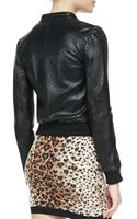 RED Valentino Perforated Stars Leather Bomber Jacket Black - Lyst