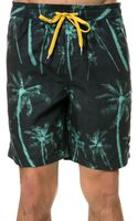 RVCA The Hairy Palms Volley Boardshorts - Lyst