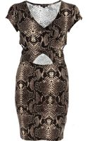 River Island Beige Snake Print Cut Out Bodycon Dress - Lyst