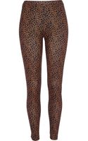 River Island Black Giraffe Print Neoprene Leggings - Lyst