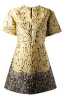 Stella McCartney Python Print Tunic Dress - Lyst
