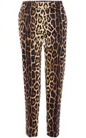 Moschino Cheap & Chic Leopard Straight Leg Trousers - Lyst