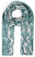 Zadig & Voltaire Cashmere Snake Print Scarf - Lyst