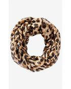 Express Overlapped Leopard Print Loop Scarf - Lyst