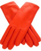 Agnelle Classic Gloves - Lyst
