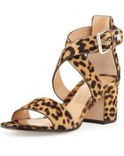 Gianvito Rossi Leopard-Print Calf Hair Low-Heel Sandal - Lyst