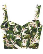 Dolce & Gabbana Lemon Blossomprint Bustier - Lyst