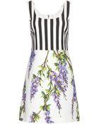 Dolce & Gabbana Printed Cotton Dress - Lyst