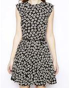 Oasis Daisy Skater Dress - Lyst