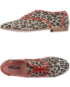 Studio Pollini Lace-Up Shoes - Lyst