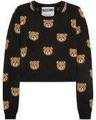 Moschino Cropped Bear-Intarsia Wool Sweater - Lyst