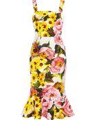 Dolce & Gabbana Floral-Print Textured Stretch-Cotton Dress - Lyst
