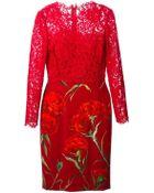 Dolce & Gabbana Lace Carnation Print Dress - Lyst