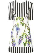 Dolce & Gabbana Striped Wisteria Print Dress - Lyst