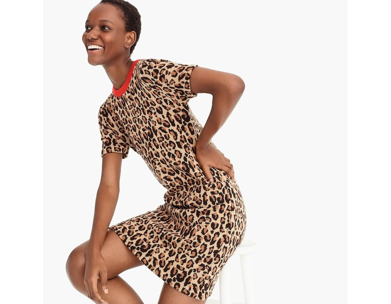 99168650 DEMYLEE X J.crew Leopard-print Sweater-dress in Brown - Lyst