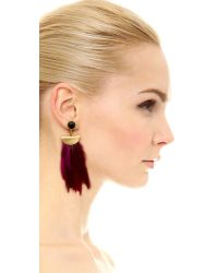 Lizzie Fortunato - 'pink Parrot' Earrings - Lyst