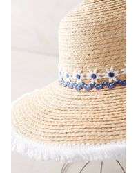 Anthropologie - Natural Daisy Crown Sun Hat - Lyst