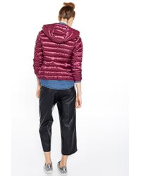 Liu Jo | Pink 'timo' Short Quilted Jacket | Lyst
