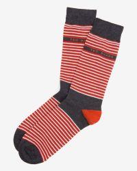 Ted Baker - Orange Striped Socks for Men - Lyst
