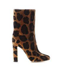 Dolce & Gabbana - Multicolor Animal-Print Velvet Boots - Lyst
