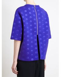 Stella McCartney - Blue Neoprene Dot Top - Lyst