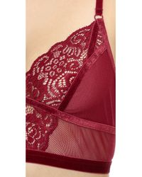 Free People - Red Seven Wonders Bra - Black - Lyst