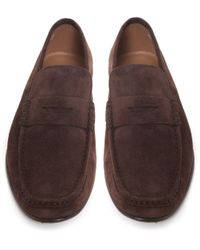 Stemar - Brown Sorrento Suede Penny Loafers for Men - Lyst