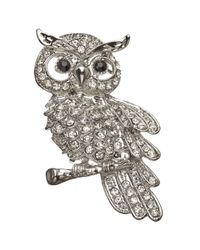 John Lewis | Metallic Glass Crystal Owl Brooch | Lyst