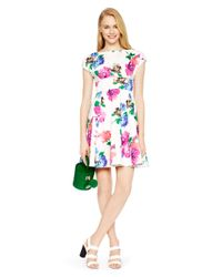 kate spade new york | White Blooms Fit And Flare Dress | Lyst