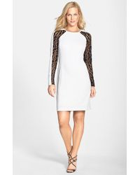Julia Jordan - Black Lace Panel Sheath Dress - Lyst