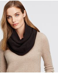 Ann Taylor | Black Chunky Cashmere Infinity Scarf | Lyst