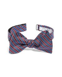 John W. Nordstrom - Blue Stripe Silk Bow Tie for Men - Lyst