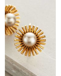 Elizabeth Cole | White Pearled Dandelion Drops | Lyst