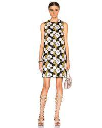 Giambattista Valli | Black Macrame Lace Mini Dress | Lyst