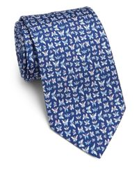 Ferragamo - Blue Butterfly Silk Tie for Men - Lyst