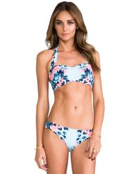 Seafolly | Bella Rose Bandeau Top in Blue | Lyst