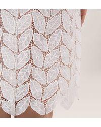 Hobbs - White Leaf Lace Dress - Lyst