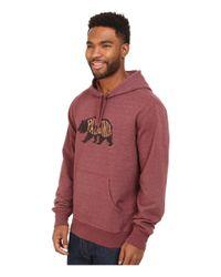 Patagonia | Brown Bear Heaven Midweight P/o Hooded Sweatshirt for Men | Lyst