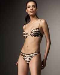 Dolce & Gabbana | Multicolor Animal Print Two-piece Bikini | Lyst