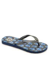 Tory Burch - Blue Flip Flop - Navy Rubber Thong Sandal - Lyst