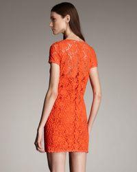 Blumarine - Orange Short-sleeve Lace Shift Dress - Lyst