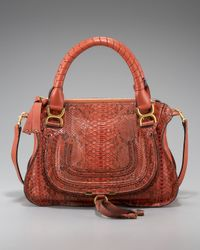 Chloé | Brown Marcie Python Shoulder Bag, Small | Lyst