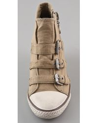 Ash | Natural Gin 3 Buckle Wedge Sneakers | Lyst