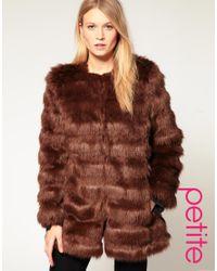 ASOS Collection | Brown Asos Petite Stripe Faux Fur Coat | Lyst