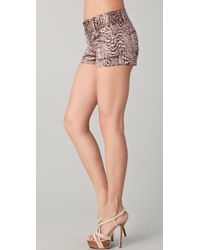 Alice + Olivia | Brown Cropped Cheetah Print Shorts | Lyst