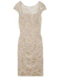 Temperley London | Beige Celestine Lace Cocktail Dress | Lyst